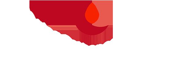 logoMittelWhite